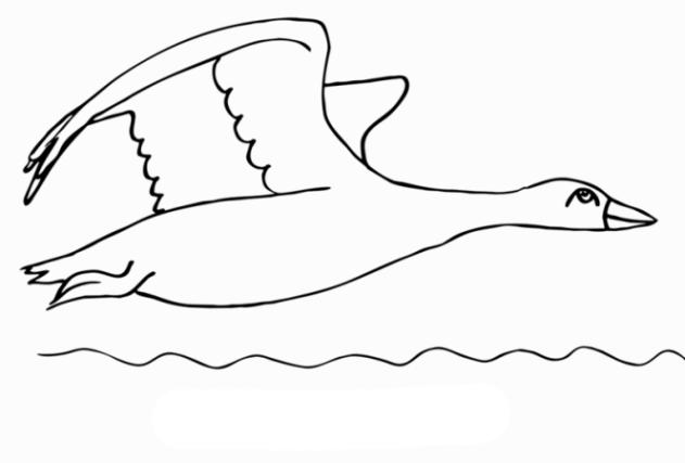 ausmalbilder zum drucken malvorlage gans kostenlos 2