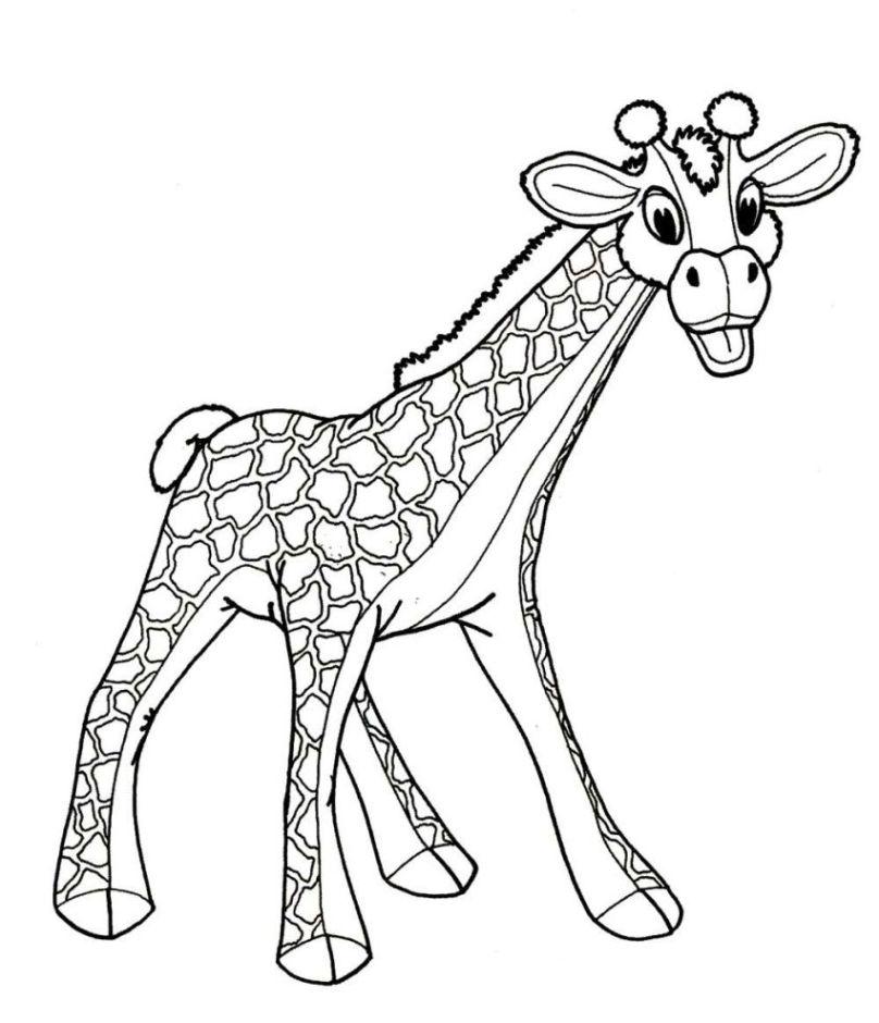 ausmalbilder giraffe kostenlos