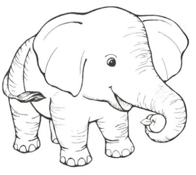 malvorlagen elefanten kostenlos ausdrucken | coloring and malvorlagan