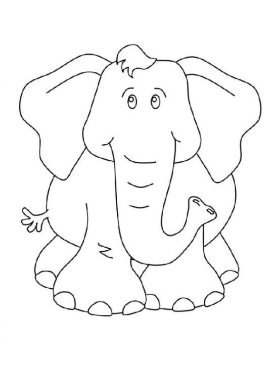 ausmalbilder zum drucken malvorlage elefant kostenlos 6