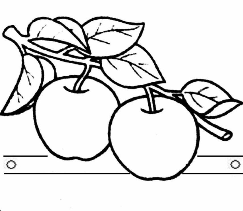 Ausmalbilder Zum Drucken Malvorlage Apfelbaum Kostenlos 1
