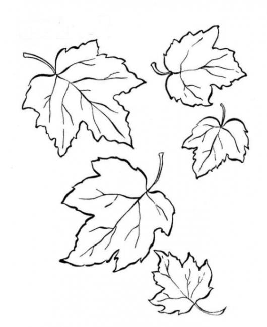 Ausmalbilder zum Drucken Malvorlage Blätter kostenlos 2