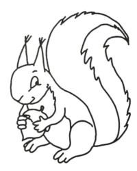 Malvorlage Eichhörnchen kostenlos 2