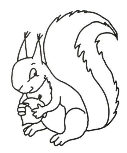 Ausmalbilder zum Drucken Malvorlage Eichhörnchen kostenlos 2