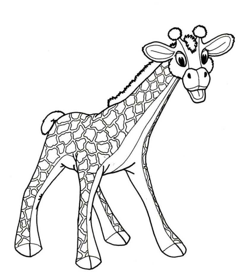 Ausmalbilder Zum Drucken Malvorlage Giraffe Kostenlos 1