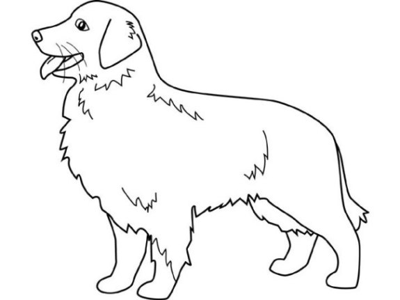 Ausmalbilder zum Drucken Malvorlage Haustiere kostenlos 1