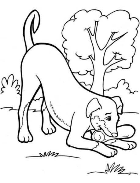 ausmalbilder zum drucken malvorlage hund kostenlos 6