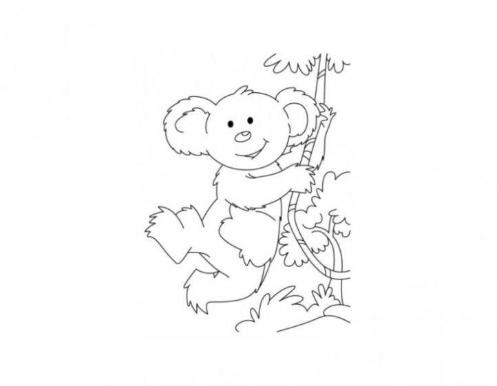 ausmalbilder zum drucken malvorlage koala kostenlos 3