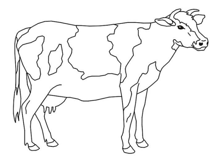 Ausmalbilder zum Drucken Malvorlage Kuh kostenlos 3