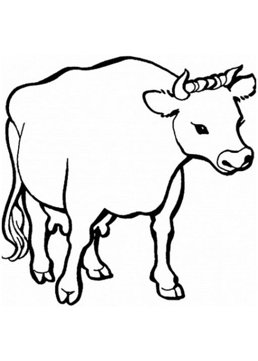 Ausmalbilder Zum Drucken Malvorlage Kuh Kostenlos 4