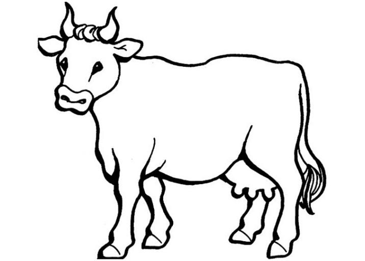 Ausmalbilder zum Drucken Malvorlage Kuh kostenlos 6