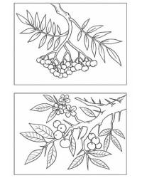 Malvorlage Laub Blätter kostenlos 2