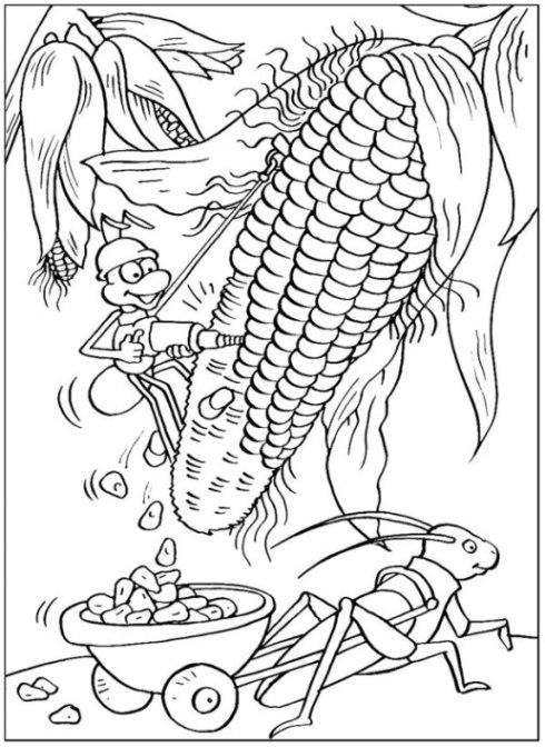 Ausmalbilder zum Drucken Malvorlage Mais kostenlos 1