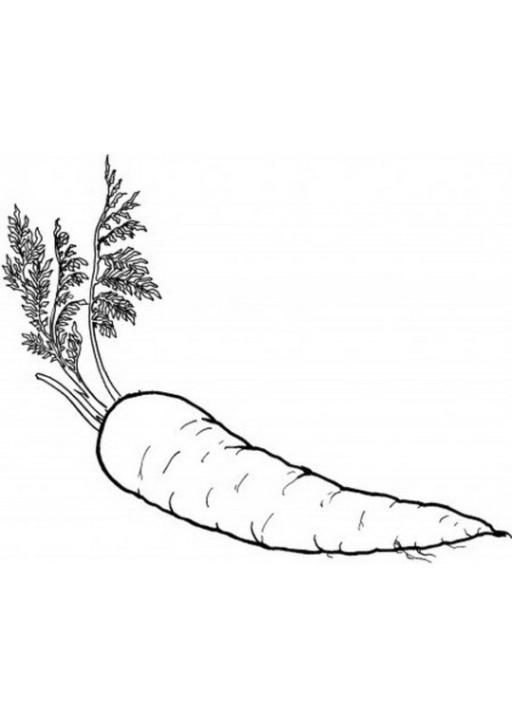 Ausmalbilder Zum Drucken Malvorlage Obst Und Gemüse Kostenlos 4