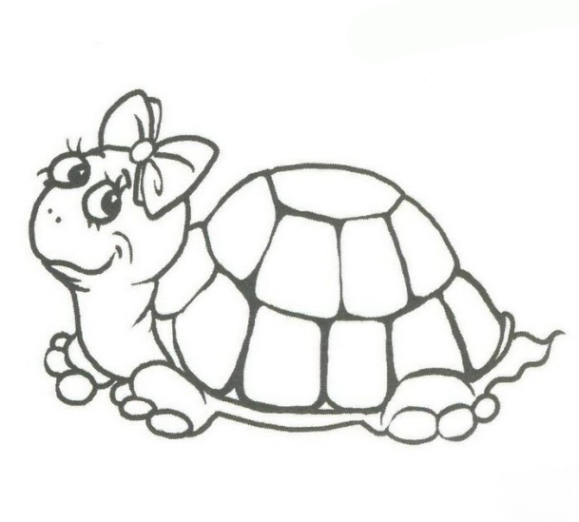 Ausmalbilder Zum Drucken Malvorlage Schildkröte Kostenlos 2