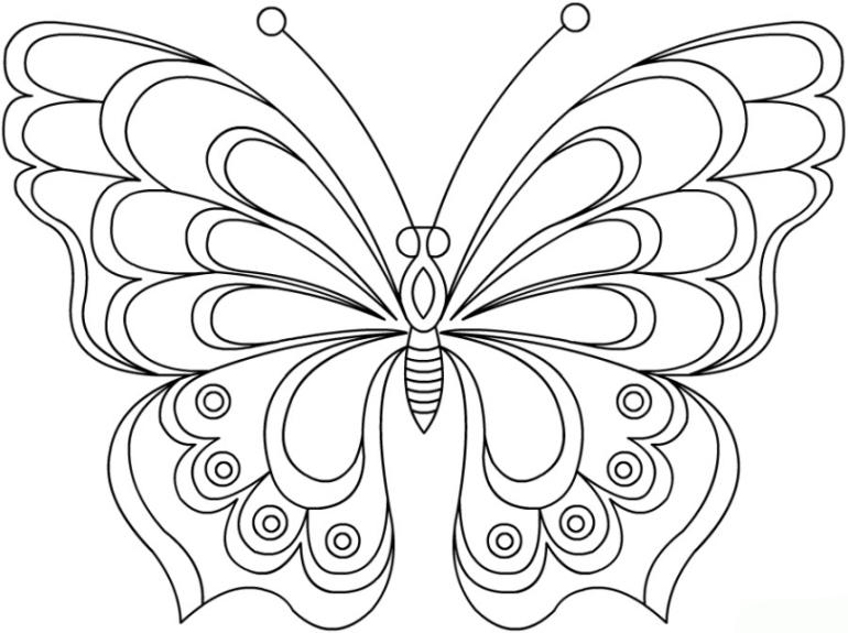 Ausmalbilder zum Drucken Malvorlage Schmetterling kostenlos 1