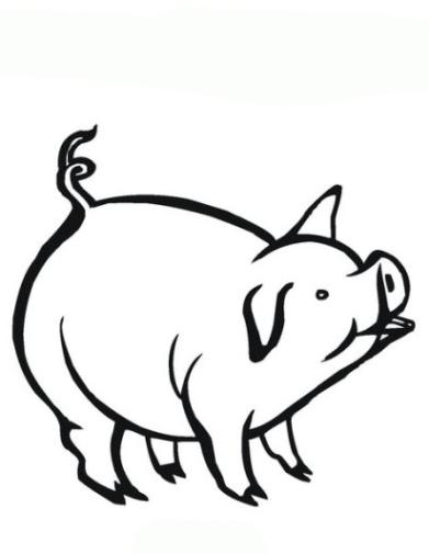 Wunderbar Malvorlage Schwein Fotos - Beispielzusammenfassung Ideen ...
