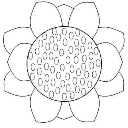 Ausmalbilder zum Drucken Malvorlage Sonnenblume kostenlos 1
