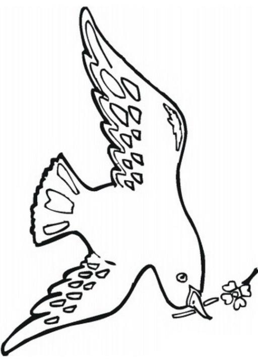 Ausmalbilder Zum Drucken Malvorlage Taube Kostenlos 1