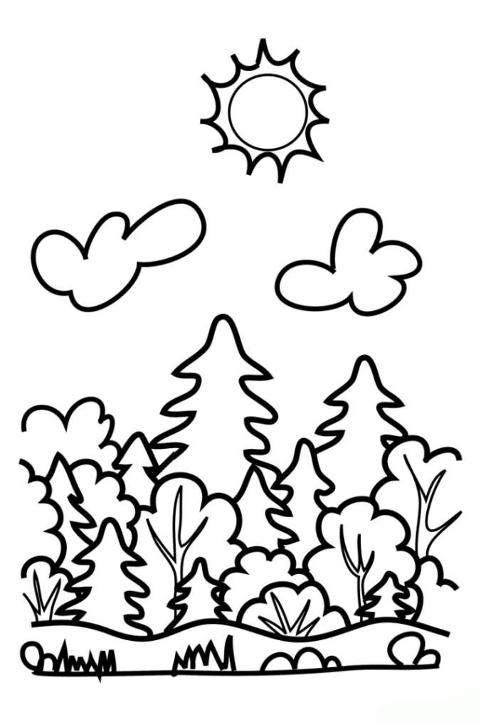 Ausmalbilder Zum Drucken Malvorlage Wald Kostenlos 2