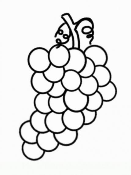 Ausmalbilder zum Drucken Malvorlage Weintraube kostenlos 1