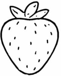 Malvorlage erdbeere kostenlos 1