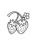 Malvorlage erdbeere kostenlos 4